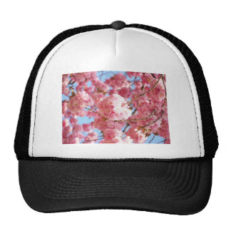 Pink Japanese Cherry Blossom Cap
