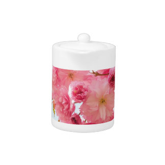 Pink Japanese Cherry Blossom Photograph