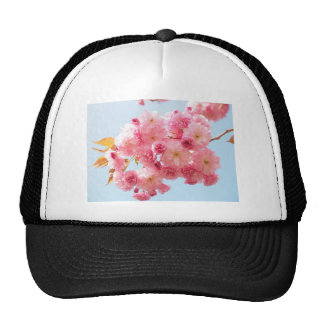 Pink Japanese Cherry Blossom Photograph Cap