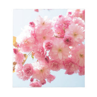 Pink Japanese Cherry Blossom Photograph Notepad