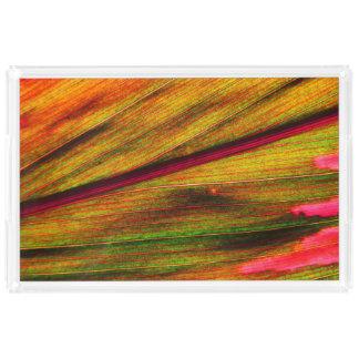 Pink Ki Acrylic Tray