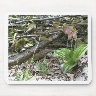 Pink lady slipper orchid mouse mat