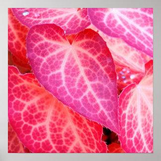 Pink leaf II Poster