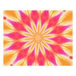 Pink Lemon Lily Photographic Print