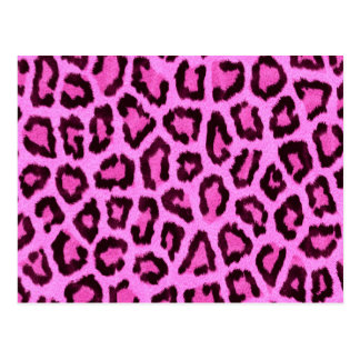 Pink leopard print pattern postcard