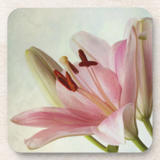 Pink Lilies Coaster