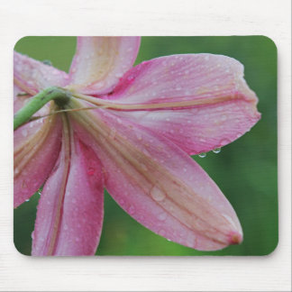Pink lilly mouse pad