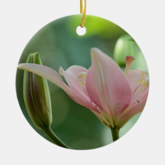 Pink Lily-Bokeh by Shirley Taylor Christmas Ornament