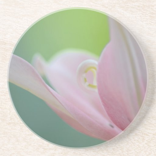 Pink Lily Coaster