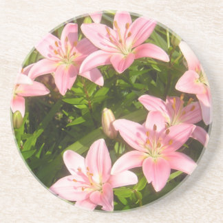 Pink Lily Beverage Coasters