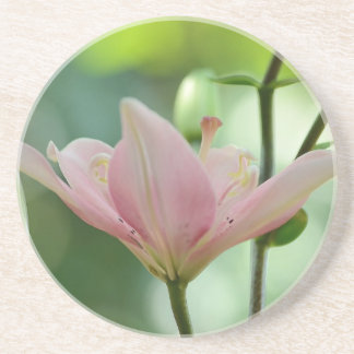 Pink Lily Drink Coasters