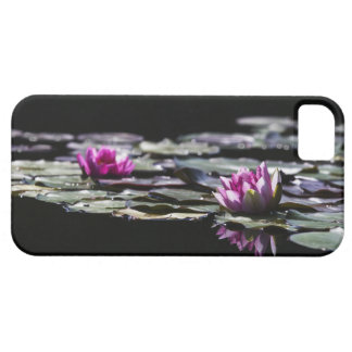 Pink Lily Custom  iPhone 5 Case