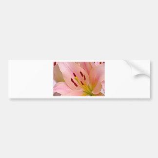 Pink Lily Floral art Bumper Sticker