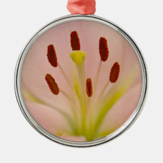 Pink Lily Floral art Christmas Ornament
