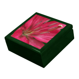 Pink Lily Giftbox Large Square Gift Box