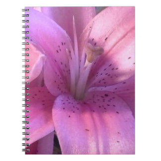 Pink Lily Notebook