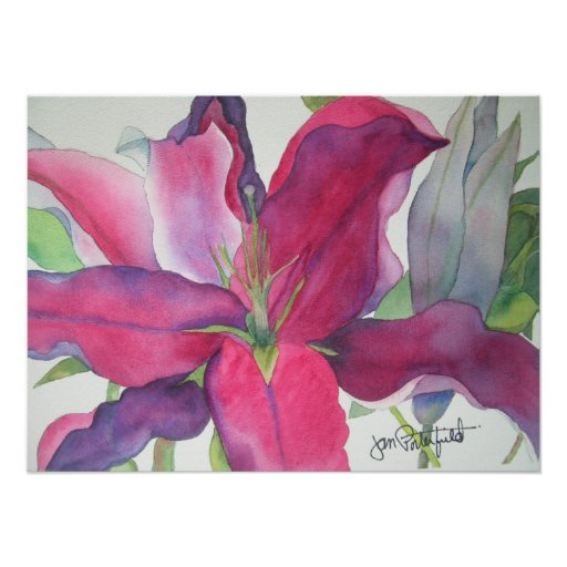 Pink Lily Print