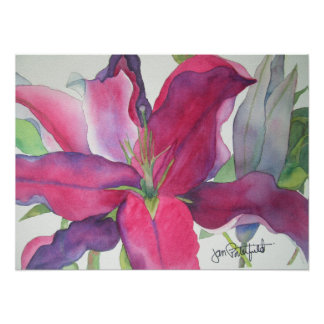 Pink Lily Print Poster