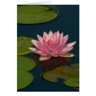 PINK LOTUS BLOSSOM (PHOTOG) NOTE CARD