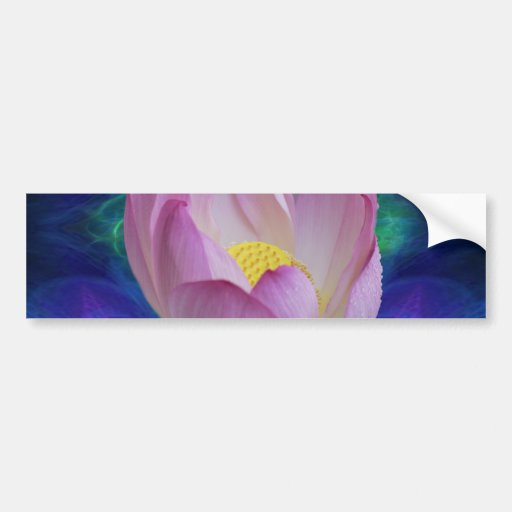 Pink lotus flower and meaning bumper stickers