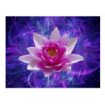 Pink lotus flower and meaning postcards