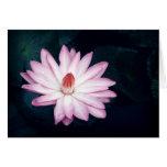 Pink Lotus Flower Greeting Cards