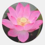 Pink Lotus Flower In Bloom Sticker