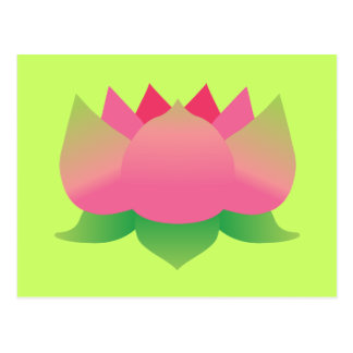 Pink Lotus Flower Postcard