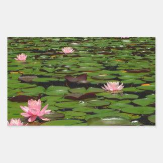 Pink lotus water lily flower pond rectangular sticker