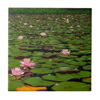 Pink lotus water lily flower pond ceramic tiles