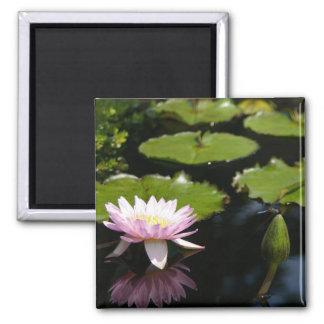 Pink Lotus Waterlily Dragonfly magnet