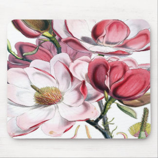 Pink Magnolia Flowers Mouse Pad