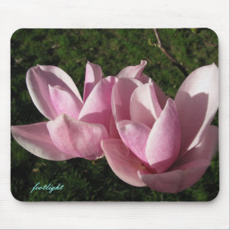 Pink magnolia mouse mats