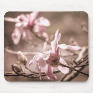 Pink Magnolia Mouse Pad