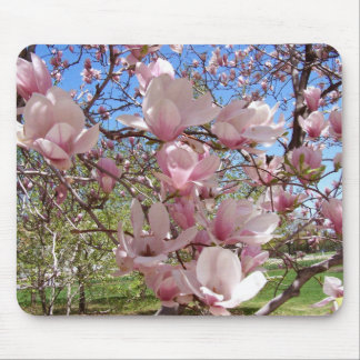 Pink Magnolia Tree Mouse Pad