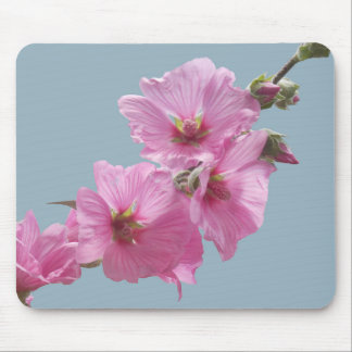 Pink Mallow Flowers Photo to Paint on Blue Mouse Pad