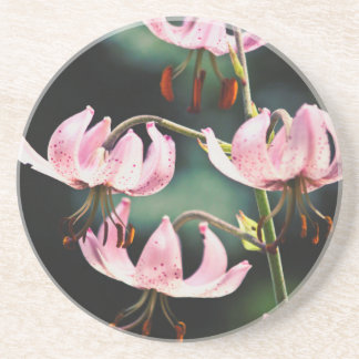 Pink Martagon Lily Flowers Coaster