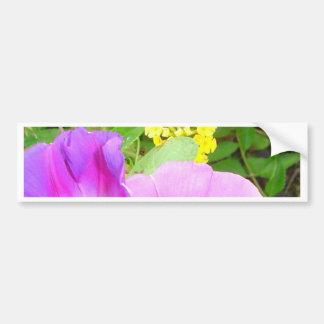 Pink Morning Glories Growing by Yellow Lantana Bumper Sticker