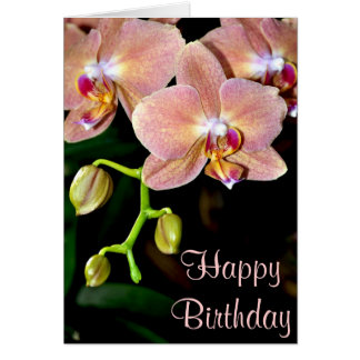 Pink moth orchids birthday greeting card