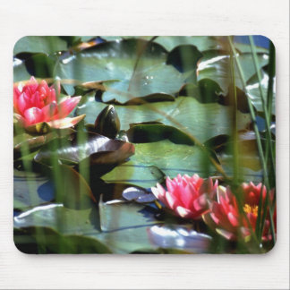 PINK MOUSE MATS WATER LILIES