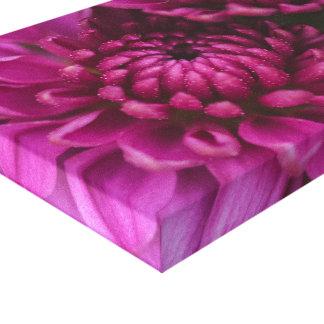 Pink Mum Canvas Print