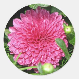 Pink Mum Round Stickers