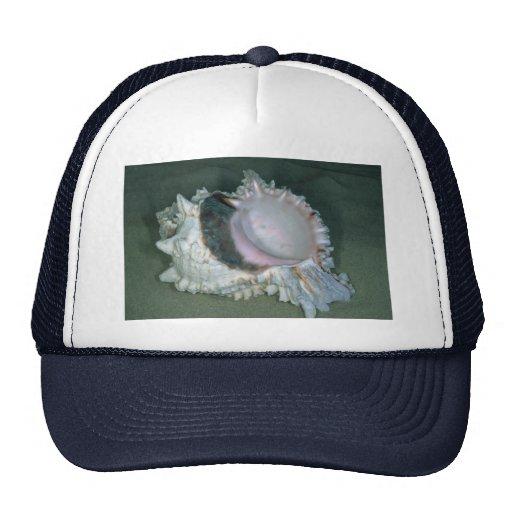 Pink murex (Murex erythrostomus) Shell Mesh Hats