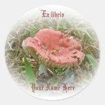 Pink Mushroom Ex libris Sticker