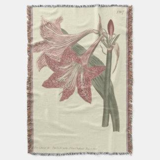 Pink Netted Veined Amaryllis Illustration Throw Blanket
