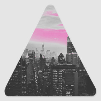 pink ny.jpg triangle sticker
