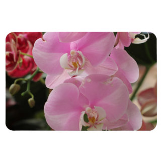 Pink Orchid blooms Rectangular Magnets