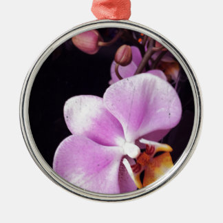 Pink orchid christmas ornament