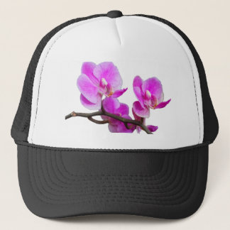 Pink Orchid Flowers Cap