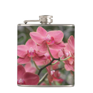 Pink Orchid flowers Hip Flask